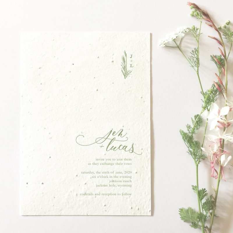 wildflower seed paper invitation